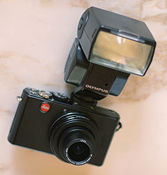 2008-12-24-dlux-4-w-FL36